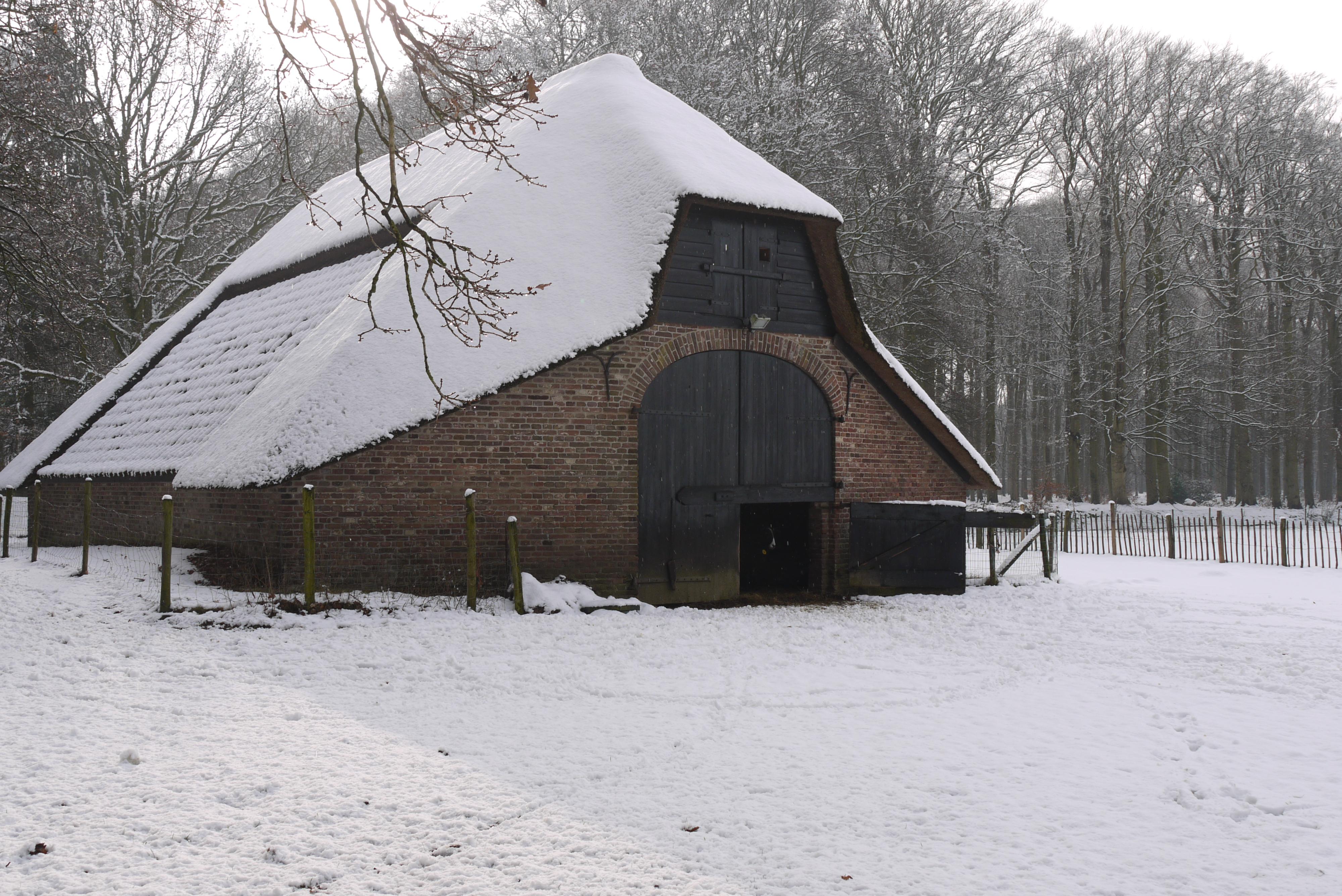 Kooi in de sneeuw